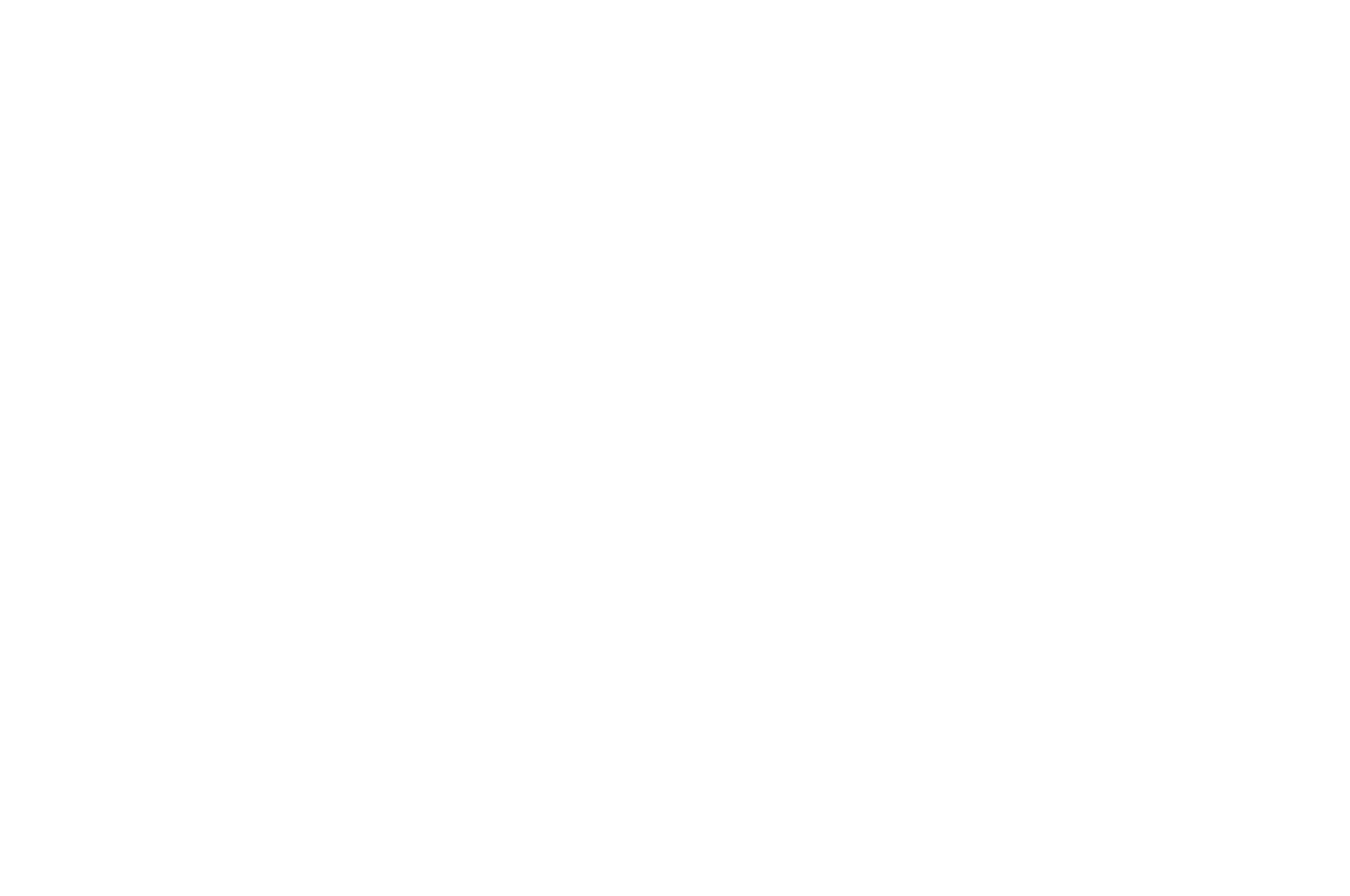Official Selection - SOMA Film Festival 2018