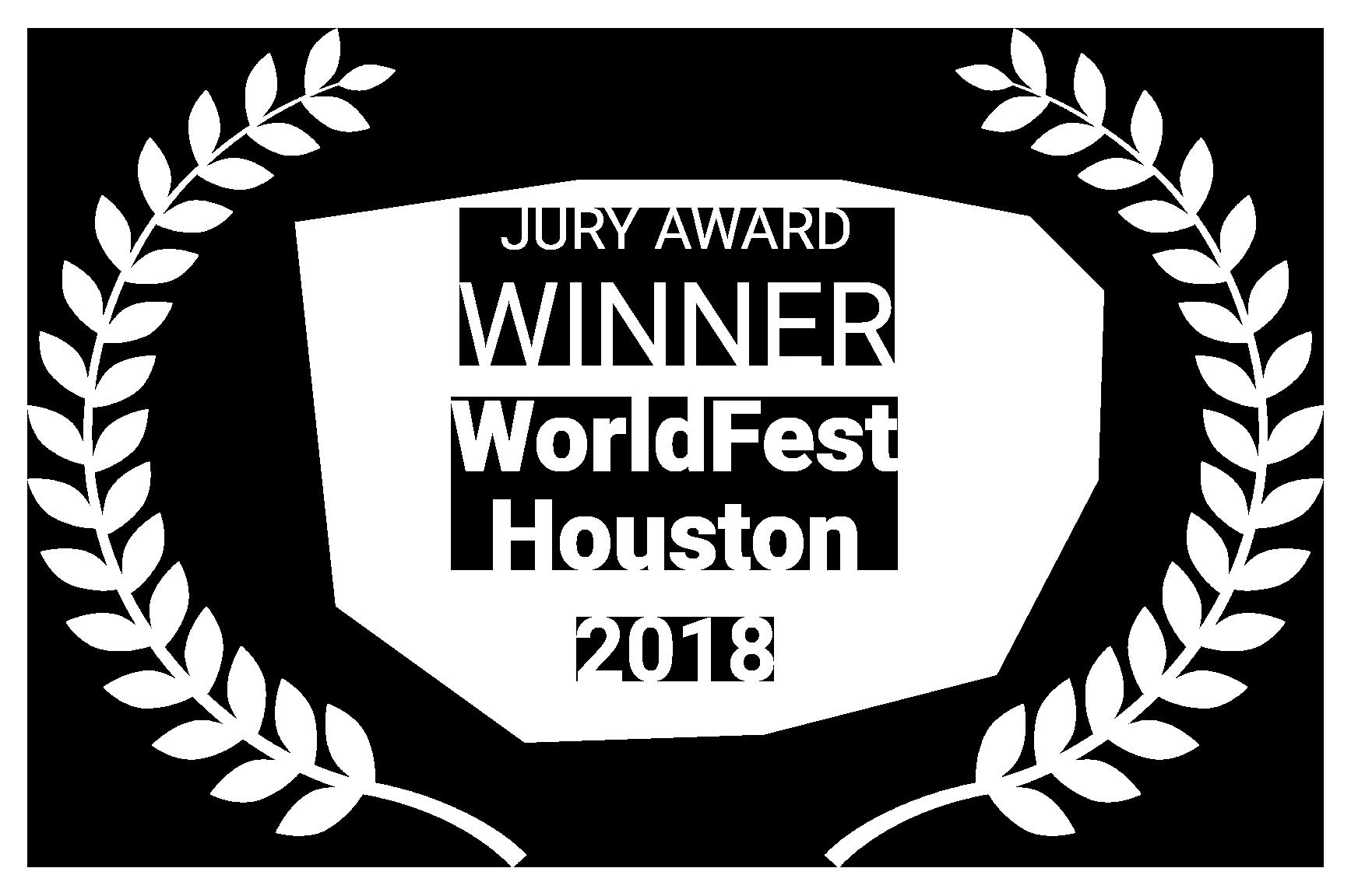 WINNER WorldFest Houston 2018
